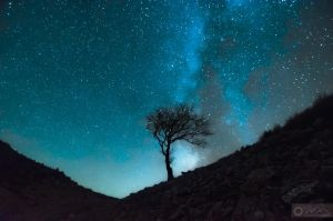 Silent night by Pod-Photography