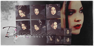 Evanescence Banner by nathan7321