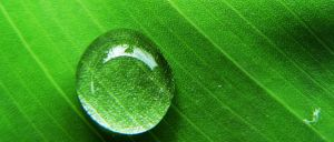 Water Drop I by Lub