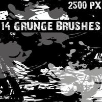Grunge Photoshop brushes by Brushportal by Brushportal