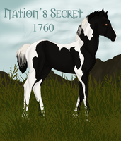 Nation's Secret 1760 by ReaWolf