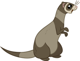 Ferret Vector by The-Intelligentleman