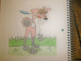 Frisbee Hit Sketch by Scamp4553