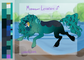 Midnight Leviathan Reference Sheet by Kama-ItaeteXIII