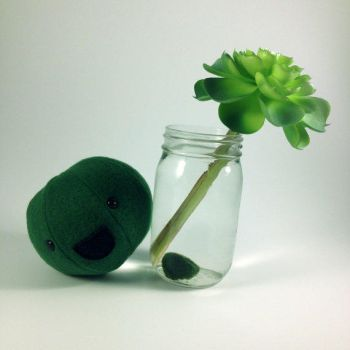 Marimo Plush by Projectnewt