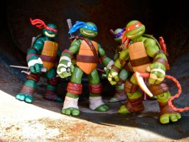 New TMNT figures!! There Back!! by PokepictureFigurefun