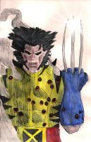 Wolverine by EmiliaArgon