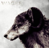 Wager by BearlyFeline