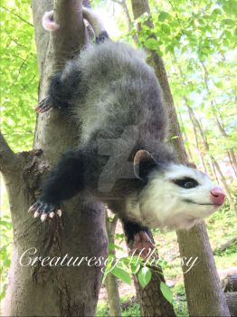 Opossum poseable art doll creature is on etsy! by creaturesofwhimsy