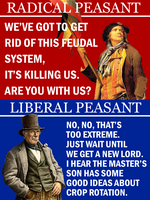 Radical Verse Liberal by Party9999999
