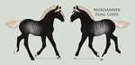 8286 Foal Design Holder by Kaninkompis