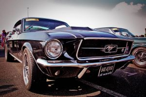 Mustang... by Romton