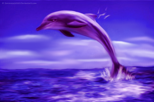 Dolphin by Sorceress2000