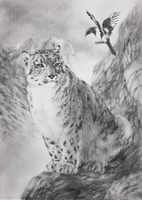 snow leopard aceo by MADMANHales