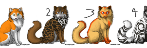 2 point cat adoptables by Shadowpaw909