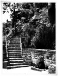 Stairs to thy painted garden by DifferentSunset