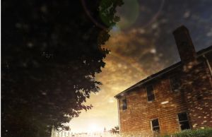 Puddle. by VLPhotography