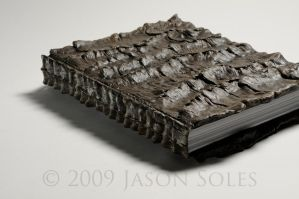 The Book, side view by MrSoles