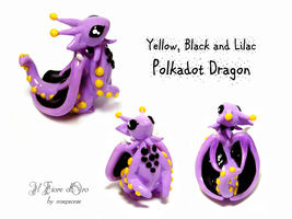 Yellow, Black and Lilac Polkadot dragon 2 by rosepeonie