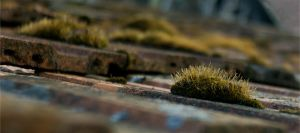 roof tiles by izzy68