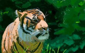 Tiger by Chewfie