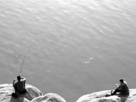Why teach a man to fish, when there is none? by havasiamir
