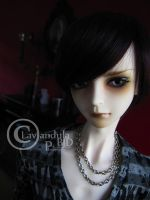 Welcome home Cyril! by Lavandula-BJD