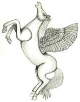 021-052 Pegasus 1 of 3 for 2013 by sweetmarly