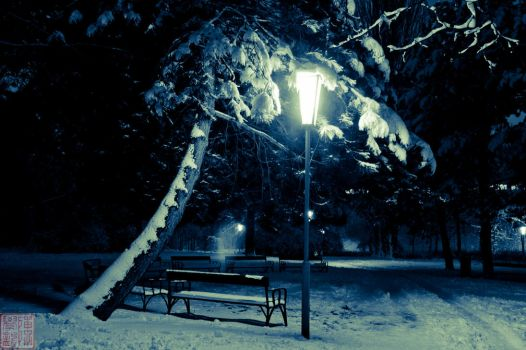 Snow lamp in the night by Fujisama1999