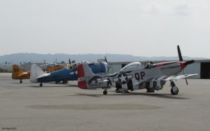 Two T6 texans and P51 Mustang color by decophoto32