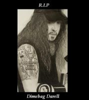 Dimebag Darell by EvilGothBeauty