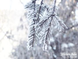 Winter's Tale - Twig by DionisDei