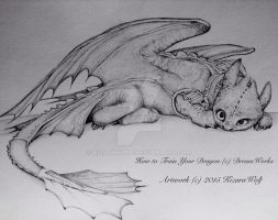 .: Toothless :. by KizaraWolf