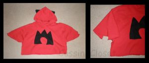 Team Magma Hoodie by CassiniCloset