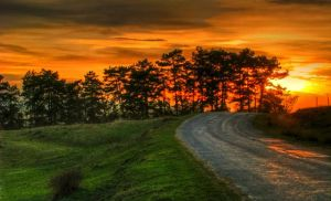 Sunset and Road by ervin21