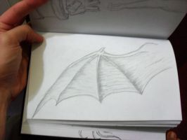 Study of wing by itemb