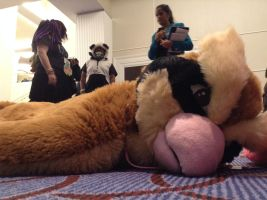 Katsucon 2014: Pidey Fainted by murkrowzy
