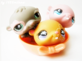 LPS Hamsters :D by 1525milena