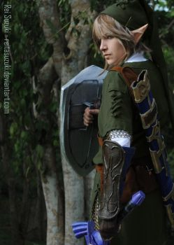 Legend of Zelda - Protector by Rei-Suzuki