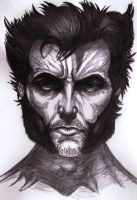 I am the wolverine by INISHTIN