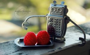 The robot who ate raspberries by Svavarsdottir