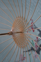 Chinese Umbrella 2 by Lindalees
