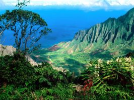 Hawaii: valley by justintime-2