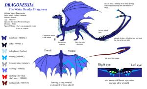 Dragonessia Ref Sheet by shabura