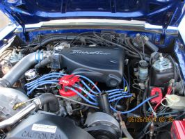 Mustang.5.0. Under The Hood by catsvsfox