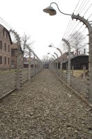 Auschwitz Electrical Fencing by spoonyvixenstock