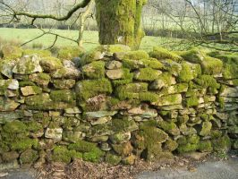 LD07 Stone Wall by wilterdrose-stock