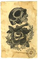 SKULLBONEZ_ROSE by KevinHarden