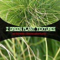 2 Green Plant Textures by LW-Lucy