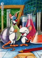 Pinky and The Brain by Yvyne